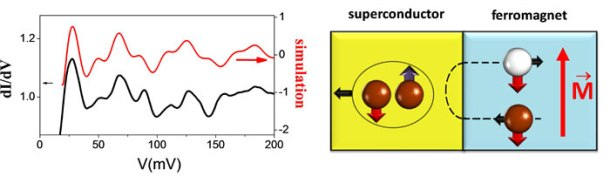 Andreev reflection, equal spin, triplet superconductivity, half-metal, cuprate, superconducting spintronics